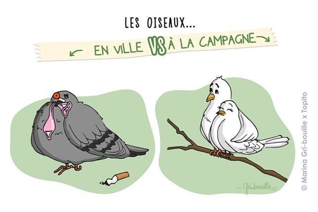topito-illustration-10